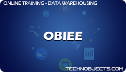 OBIEE data warehousing training Data Warehousing OBIEE