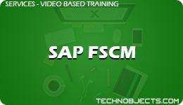 SAP FSCM  SAP Video Based Training SAP FSCM