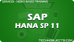 SAP HANA SP 11  SAP Video Based Training SAP HANA SP 11 1