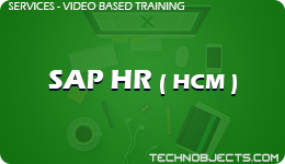 SAP HR ( HCM )  SAP Video Based Training SAP HR HCM