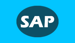 SAP BPC 10 PLUG AND PLAY HARD DRIVE  SAP Pre Installed Hard Drives Sap 1