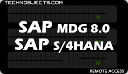 SAP MDG 8.0  SAP S/4HANA sap ides remote access SAP IDES Remote Access MDG 8