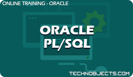 Oracle PL/SQL  ORACLE Oracle Pl SQL