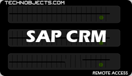 SAP CRM sap ides remote access SAP IDES Remote Access SAP CRM