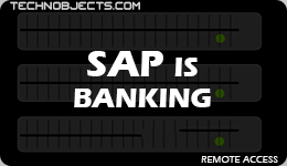 SAP IS Banking sap ides remote access SAP IDES Remote Access SAP IS Banking
