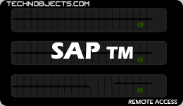 SAP TM sap ides remote access SAP IDES Remote Access SAP TM